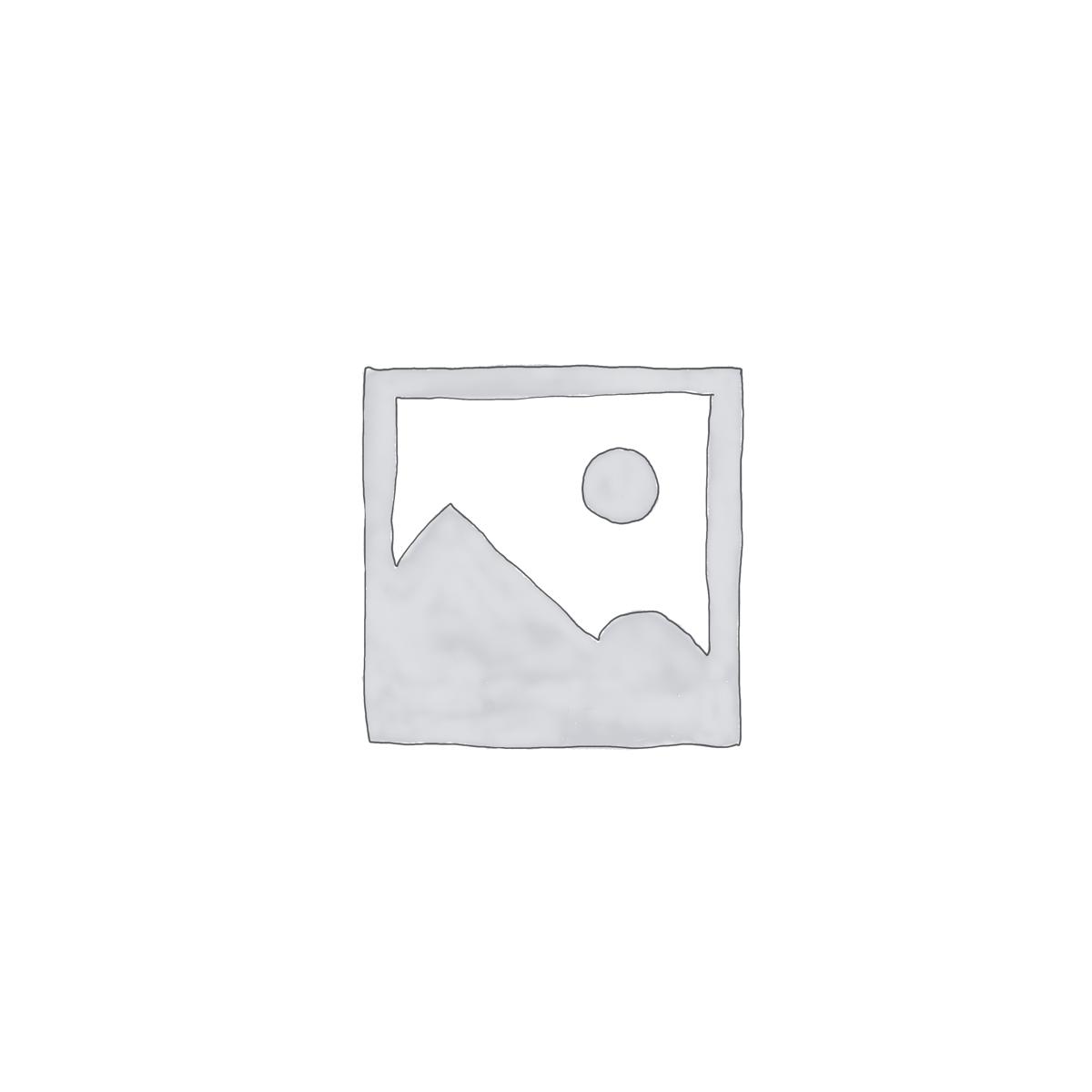Modulo software allarmi Email/telefonici